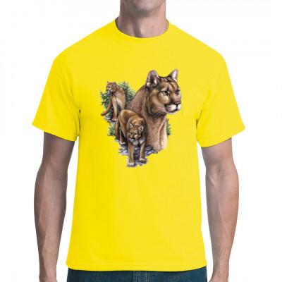 Collage aus drei Pumas. Der Puma, auch Berglöse genannt, ist eine der größten Raubkatzen Nord- und Südamerikas.