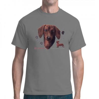 Der Dackel, auch Dachshund genannt, ist ein beliebter Jagdhund, der vornehmlich bei Jagd auf Dachse oder Füchse innerhalb deren Baue eingesetzt wird.  Tolles Motiv für Tierfreunde und Hundefans.
