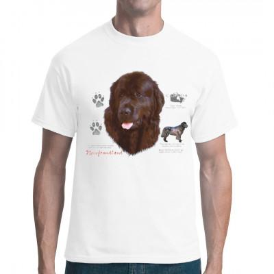 Der aus Kanada stammende Neufundländer oder Newfoundland ist ein massiver und kräftiger Hund. Er ist vom Wesen her ruhig und gutmütig.