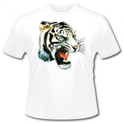 White Tiger, Tiere & Natur, Männer & Frauen