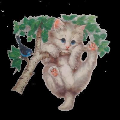 Kätzchen auf einem Ast, MOTIVE P - Z, Tiere, Haustiere