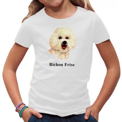 Rassehund Bichon Frise, Sonstige, Tiere & Natur, Hunde, Hunde