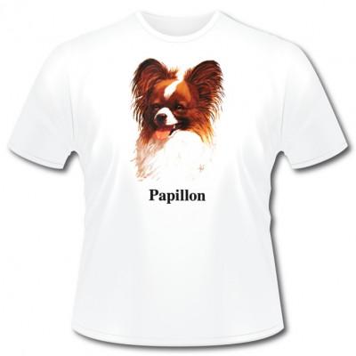 Rassehund Papillon, Sonstige, Tiere & Natur, Hunde