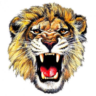 Fotorealistischer Löwenkopf  mit aufgerissenem Maul, MOTIVE P - Z, Tiere, Meerestiere, Sonstige, Z - Zoo, ALLE MOTIVE, Tiere & Natur, TIERE, WILDE TIERE