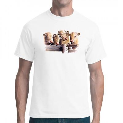 T-Shirt - Motiv für Landwirte: Eine Gruppe Charolais Rinder Mittels Transfer Siebdruckverfahren aufgebracht. waschfest