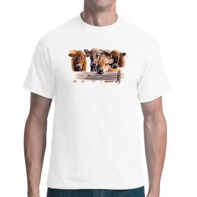 T-Shirt - Motive : Jersey Kühe  Mittels Transfer Siebdruckverfahren aufgebracht. waschfest