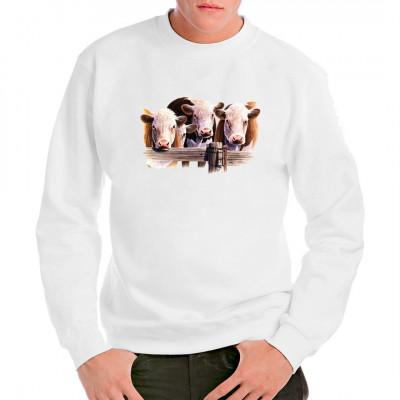 T-Shirt - Motiv : Hereford - Rinder  Mittels Transfer Siebdruckverfahren aufgebracht. waschfest