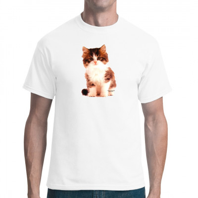Kinder T-Shirt - Motiv : Kleines Kätzchen  Mittels Transfer Siebdruckverfahren aufgebracht. waschfest