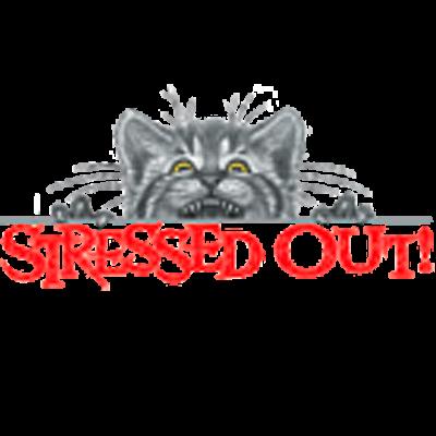 Stressed Out! Kätzchen, MOTIVE P - Z, Tiere, Haustiere