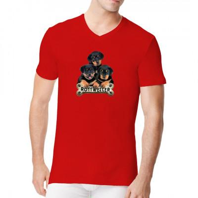 T-Shirt-Motiv : Rottweiler Welpen, Tiere & Natur, Hunde, Hunde