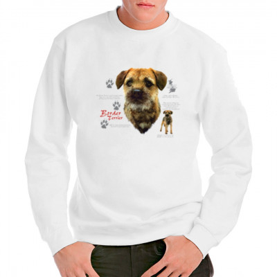 Border Terrier Hund, Tiere & Natur, Hunde, Hunde