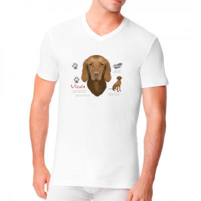 Hunde Motiv: Kurzhaarvizsla, Tiere & Natur, Hunde, Hunde