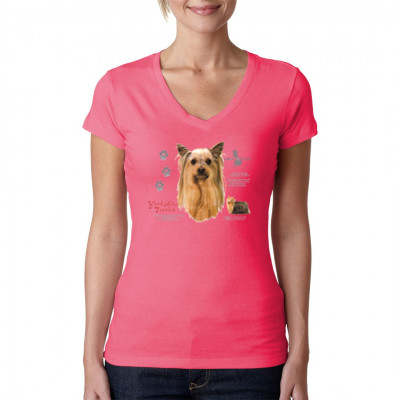 Yorkshire Terrier, Tiere & Natur, Hunde, Hunde