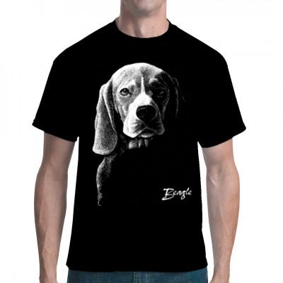 Beagle Rassehund Hund, Tiere & Natur, Hunde, Hunde