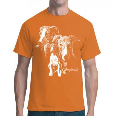 Greyhound Hund, Tiere & Natur, Hunde, Hunde