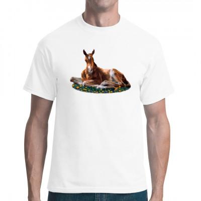 Pferde Shirt Motiv: Fohlen zwischen Blumen. Toller Shirtdruck für alle Pferde-Fans  Motivgröße: 16 x 22 cm