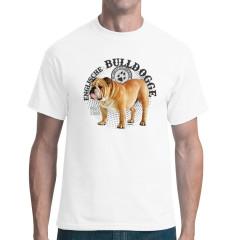 Hunde Motiv: Englische Bulldogge Foto