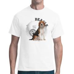 Rassehund: Beagle