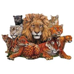 Great Cats - Raubkatzen