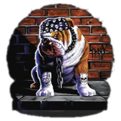 Tuff Dog - Zäher Hund