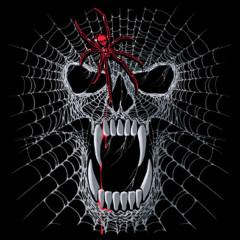 Spinnennetz Totenschädel