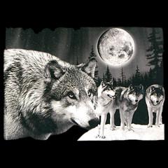 Wölfe mit Mond