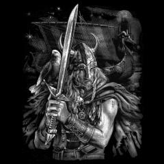 Viking Wikinger