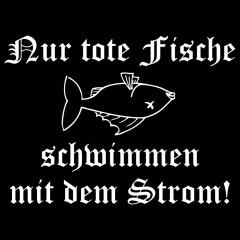 Nur tote Fische