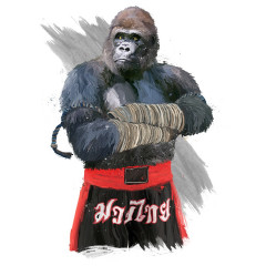 Gorilla Muay Thai Fighter