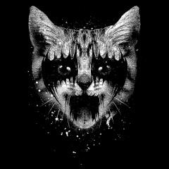 Metal Pussy Joker Cat