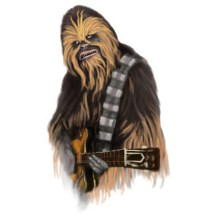 Chewbacca Rocks