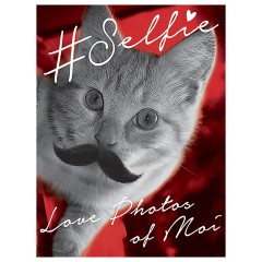 Selfie-Cat Like it