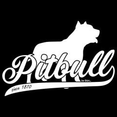 Rassehund Pitbull (weiß)