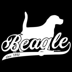 Hunde Motiv: Beagle (weiß)