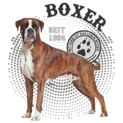 Hunde Motiv: Boxer Foto