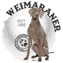 Rassehund: Weimaraner