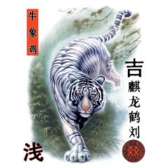 Weißer Tiger auf der Jagd