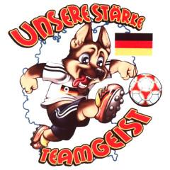 Teamgeist Fuchs