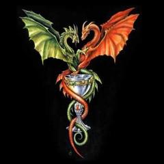 Drachen und Kelch