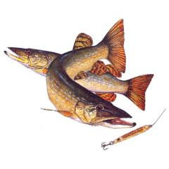 Angler-Motiv: Hecht