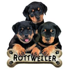 T-Shirt-Motiv : Rottweiler Welpen