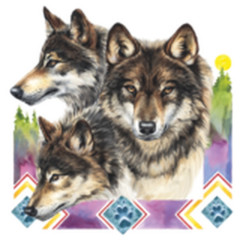 3 Wölfe