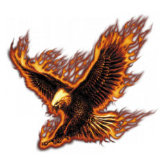 Flaming Eagle USA