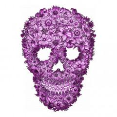 Totenkopf aus Blumen, Flowered Skull
