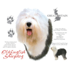 Bobtail, Altenglischer Schäferhund, Old English Sheepdog