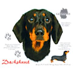 T-Shirt Dackel Kurzhaar Schwarz Hund