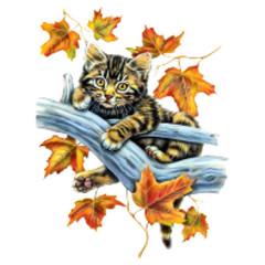 Katze mit Laub