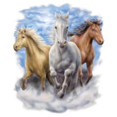 Rennende Pferde am Strand